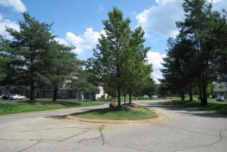 Pine Ridge Boulevard